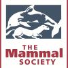 mammal society