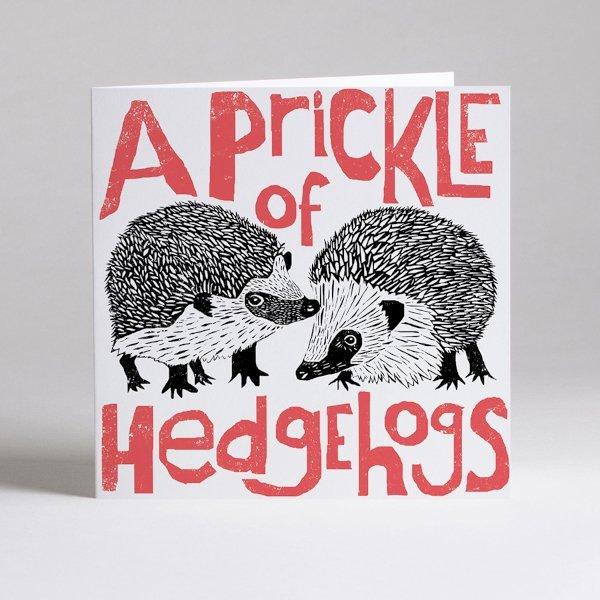 Prickle Of Hedgehogs Blank Card