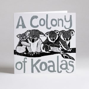 Colony of koalas